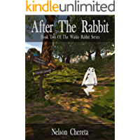 After The Rabbit: Book Two Of The Waldo Rabbit Series