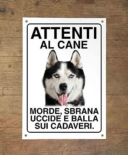 Il tempo sa mordere meglio dei cani (Italian Edition)