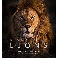 Remembering Lions (Remembering Wildlife)