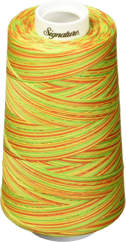 40wt//3000 yd Signature Thread Variegated Citrus