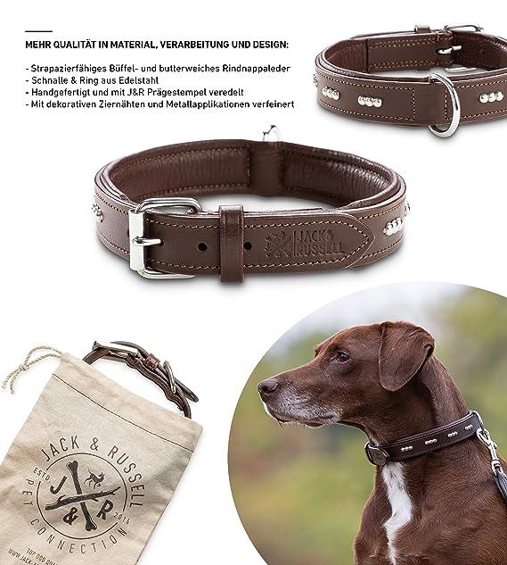 Jack /& Russell Premium Leder Hundeleine Dora 2,0m Hunde Lederleine mit Karabiner Echtleder Leine mehrfach verstellbar