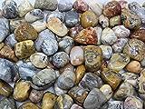 1/4 lb Bulk Lot Crazy Lace Agate Tumbled Stones