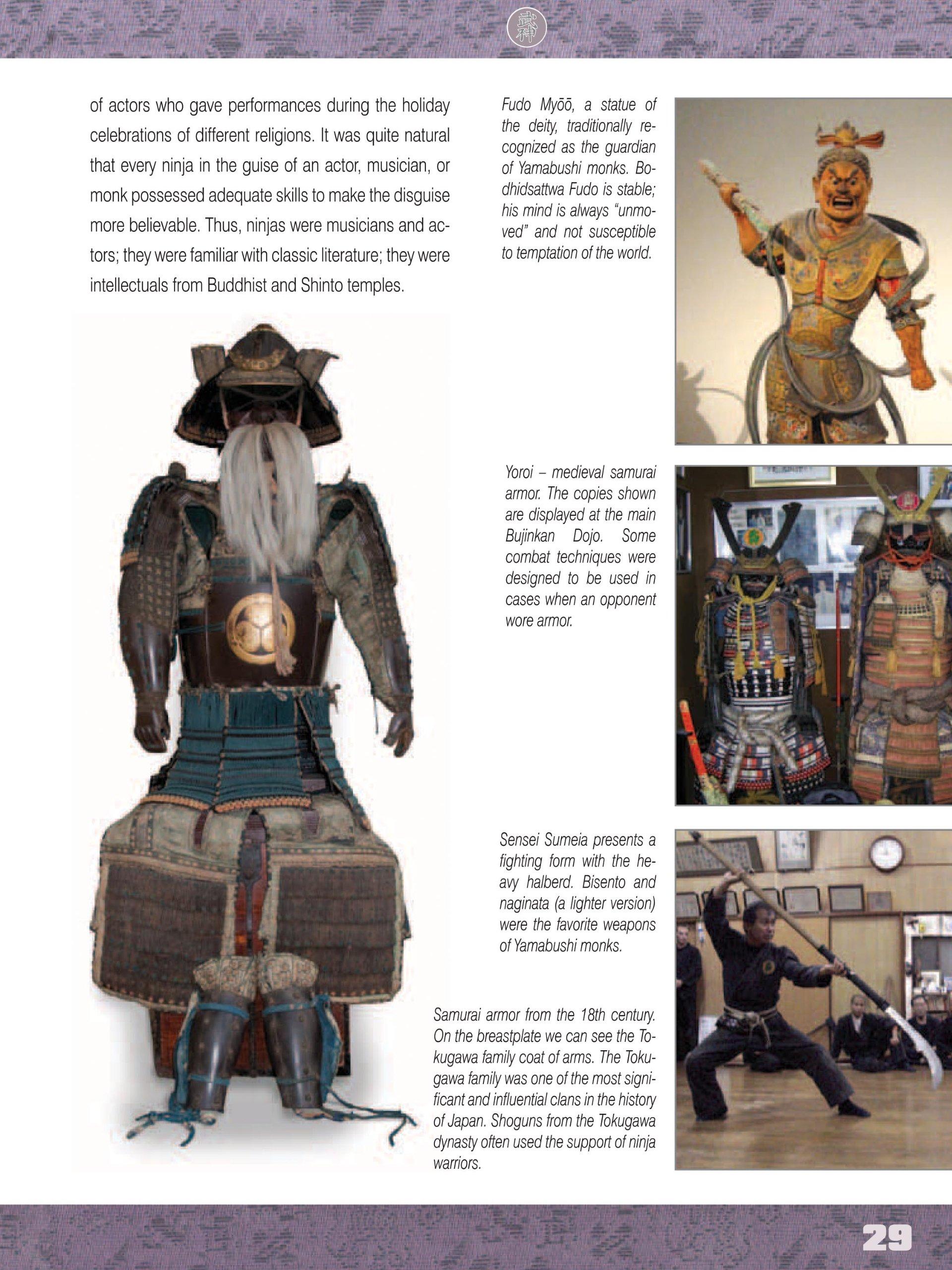 The Illustrated Ninja Handbook: Hidden Techniques of ...