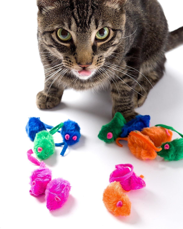 Mejores juguetes para gatos (análisis) 2019 6
