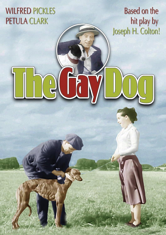 Gay tv sex