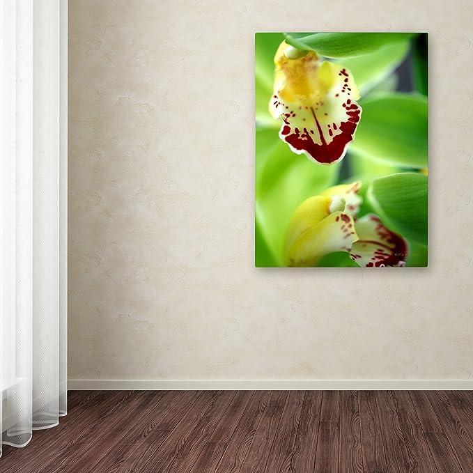 Amazon Com Cymbidium Seafoam Emerald Orchid By Kathy Yates 14 By 19 Inch Canvas Wall Art Prints Posters Prints