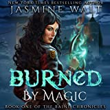 Burned by Magic: The Baine Chronicles, Book 1