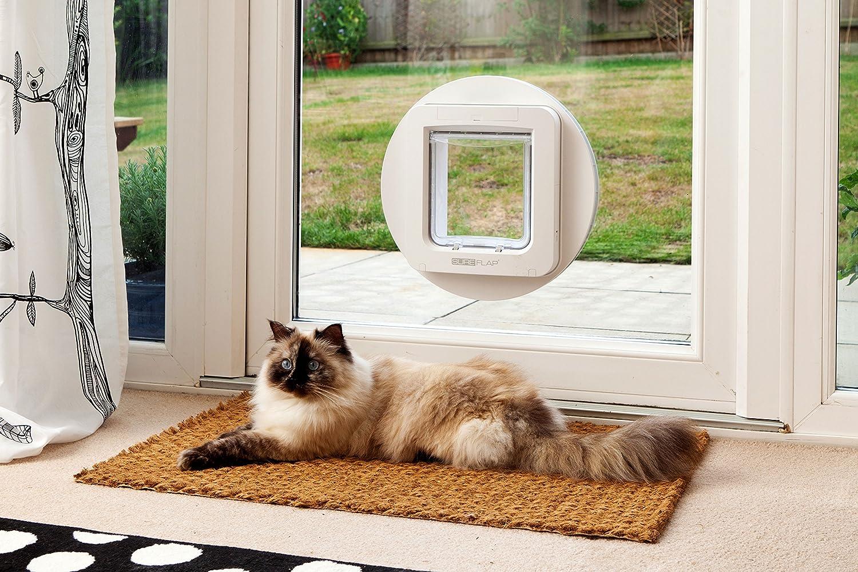 SureFlap Microchip controlado mascota solapa - Blanco