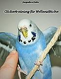 Clickertraining für Wellensittiche