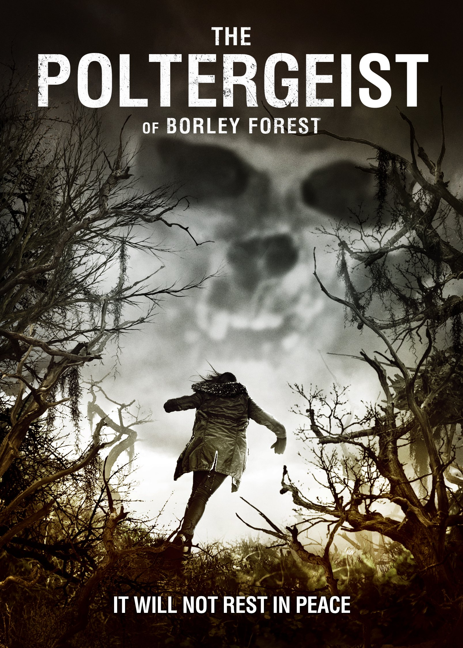 DVD : The Poltergeist of Borley Forest (DVD)