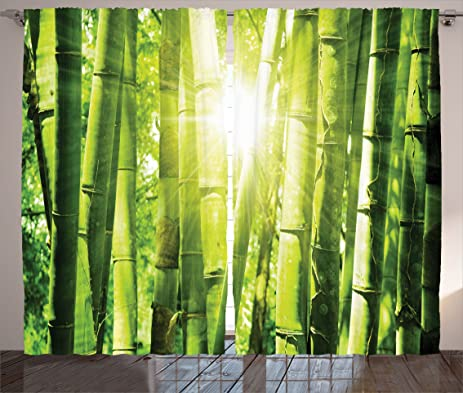 Green Curtains Asian Decor By Ambesonne, Bamboo Forest With Morning  Sunlight And Sun Seen Through