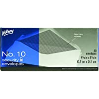 Hilroy No. 10 Security Envelopes, 4-1/8 X 9-1/2-Inch, 40-Count, White (36613)