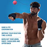 Boxing Reflex Ball | Speed and Fight Punching