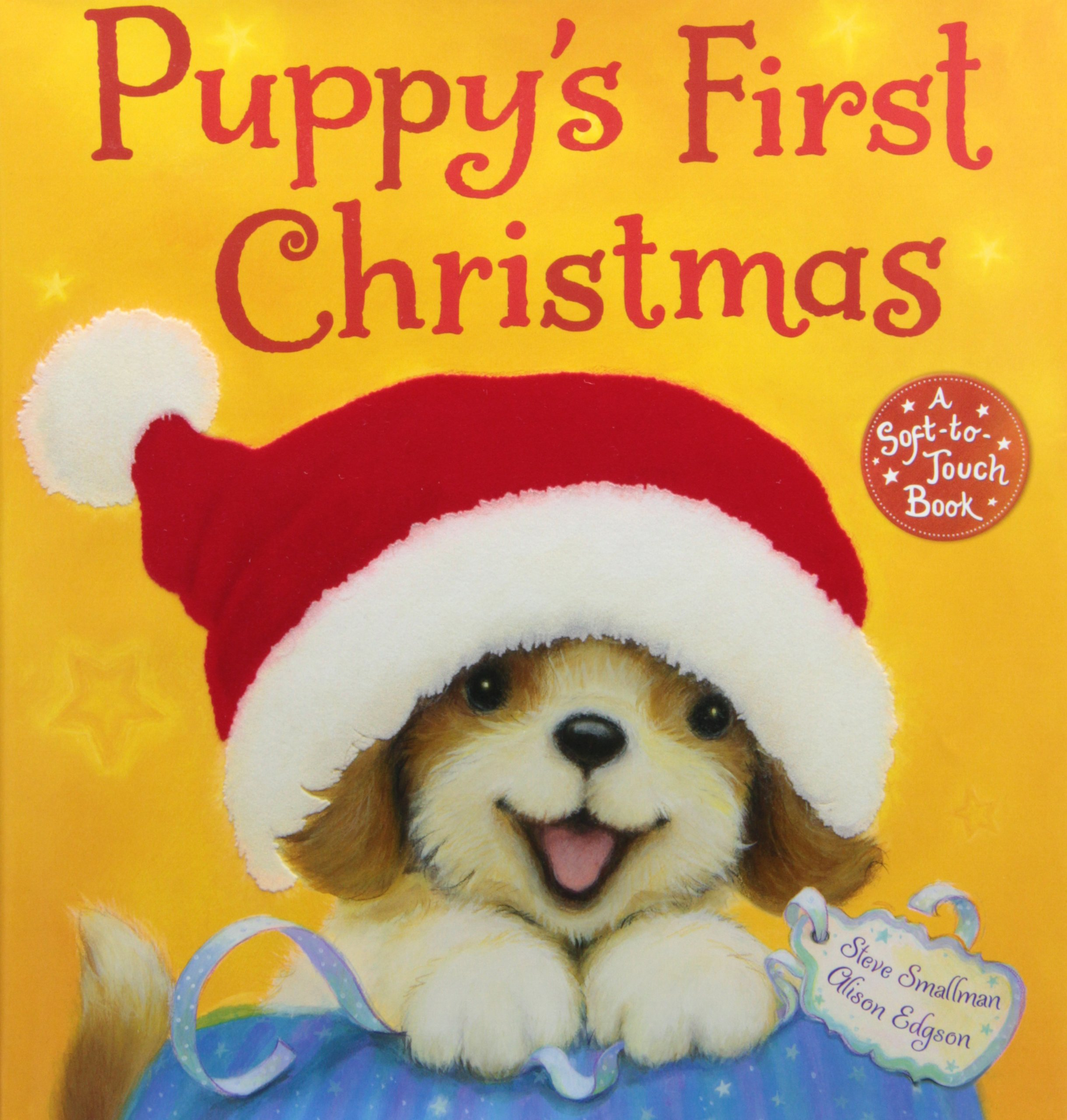 Puppy's First Christmas: 9780545481687: Amazon.com: Books