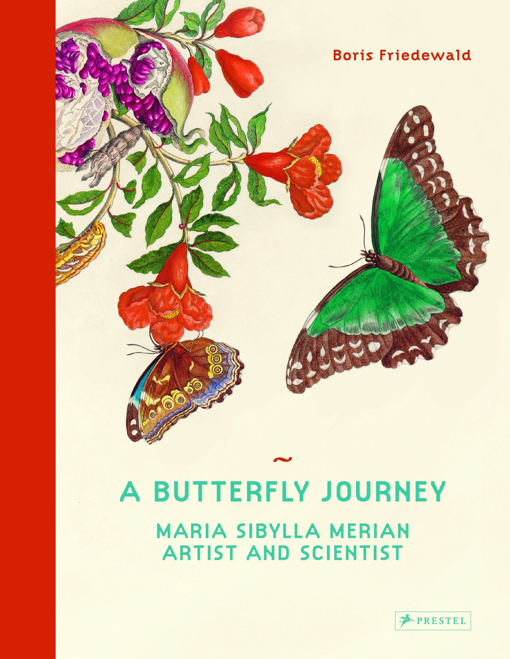 insects and flowers the art of maria sibylla merian co uk a butterfly journey maria sibylla merian artist and scientist