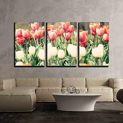 Amazon.com: wall26 - 3 Piece Canvas Wall Art - Tulips in Three ...