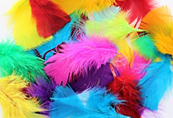 5cf6a2e67ed Kids B Crafty 250 Bright Coloured Feathers For Crafts Hats Easter ...