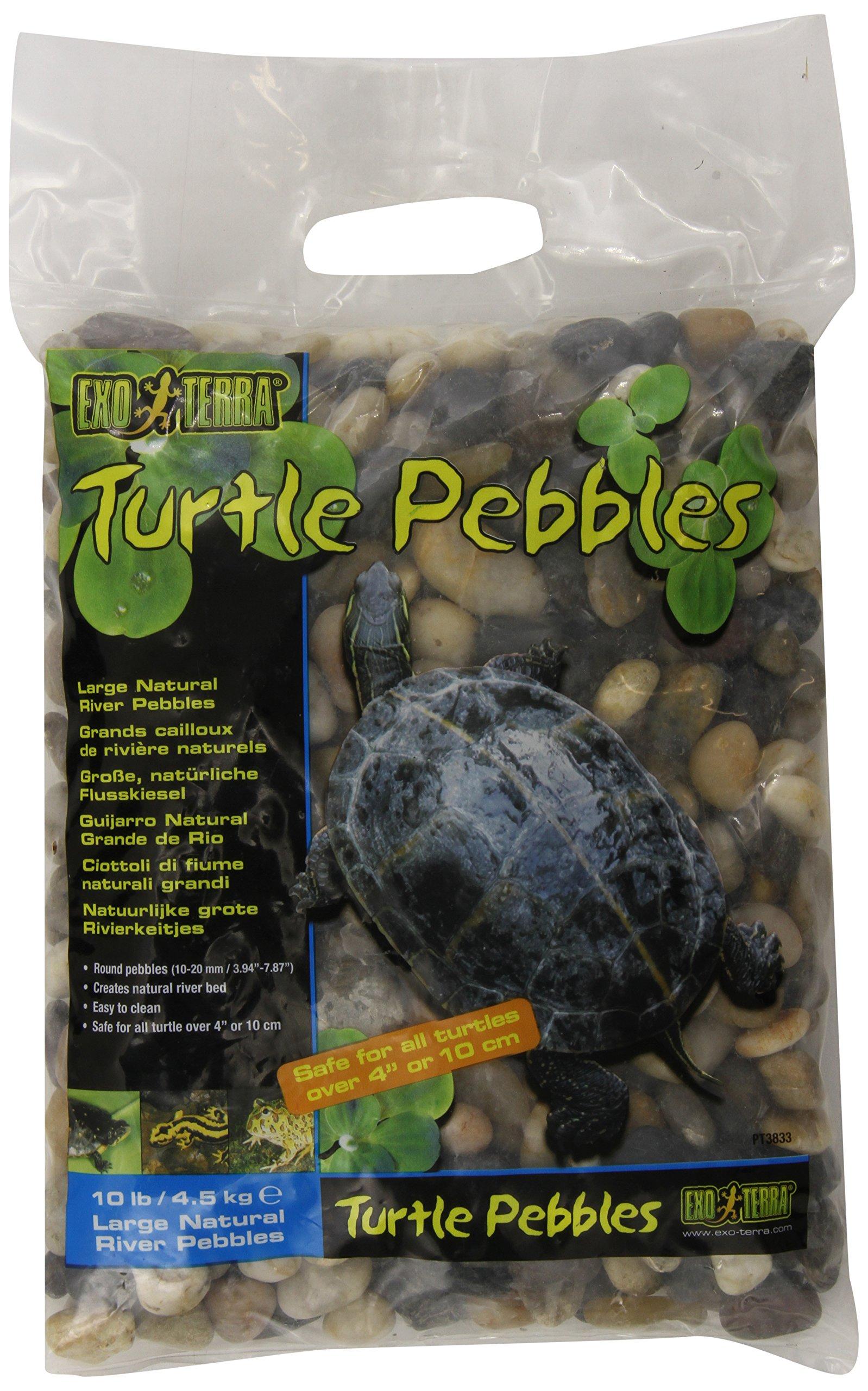 Exo Terra Turtle Pebbles, Large