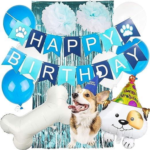 Amazon.com: Suministros para fiestas de cumpleaños para ...