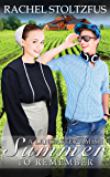 A Lancaster Amish Summer to Remember (Lancaster County Seasons (an Amish of Lancaster County Saga) Book 1) (English Edition)
