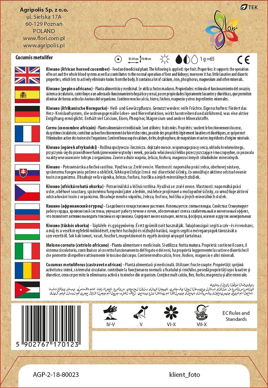Amazon.com : Cucumis Metulifer - Kiwano (African cucumber) seeds 0.3 g : Garden & Outdoor