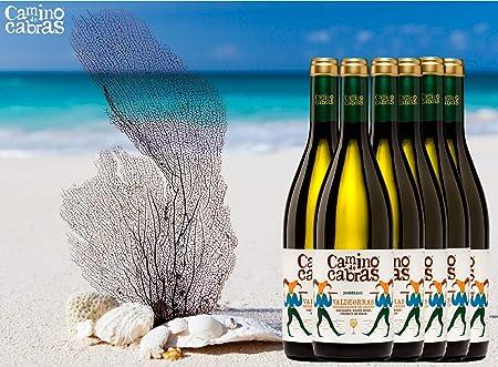 CAMINO DE CABRAS Vino blanco - Godello Valdeorras - Producto Gourmet - caja de vino - Vino bueno para regalo - 6 botellas x 75cl