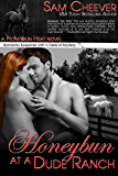 Honeybun at a Dude Ranch: Romantic Suspense with a Taste of Mystery (Honeybun Heat Book 6)