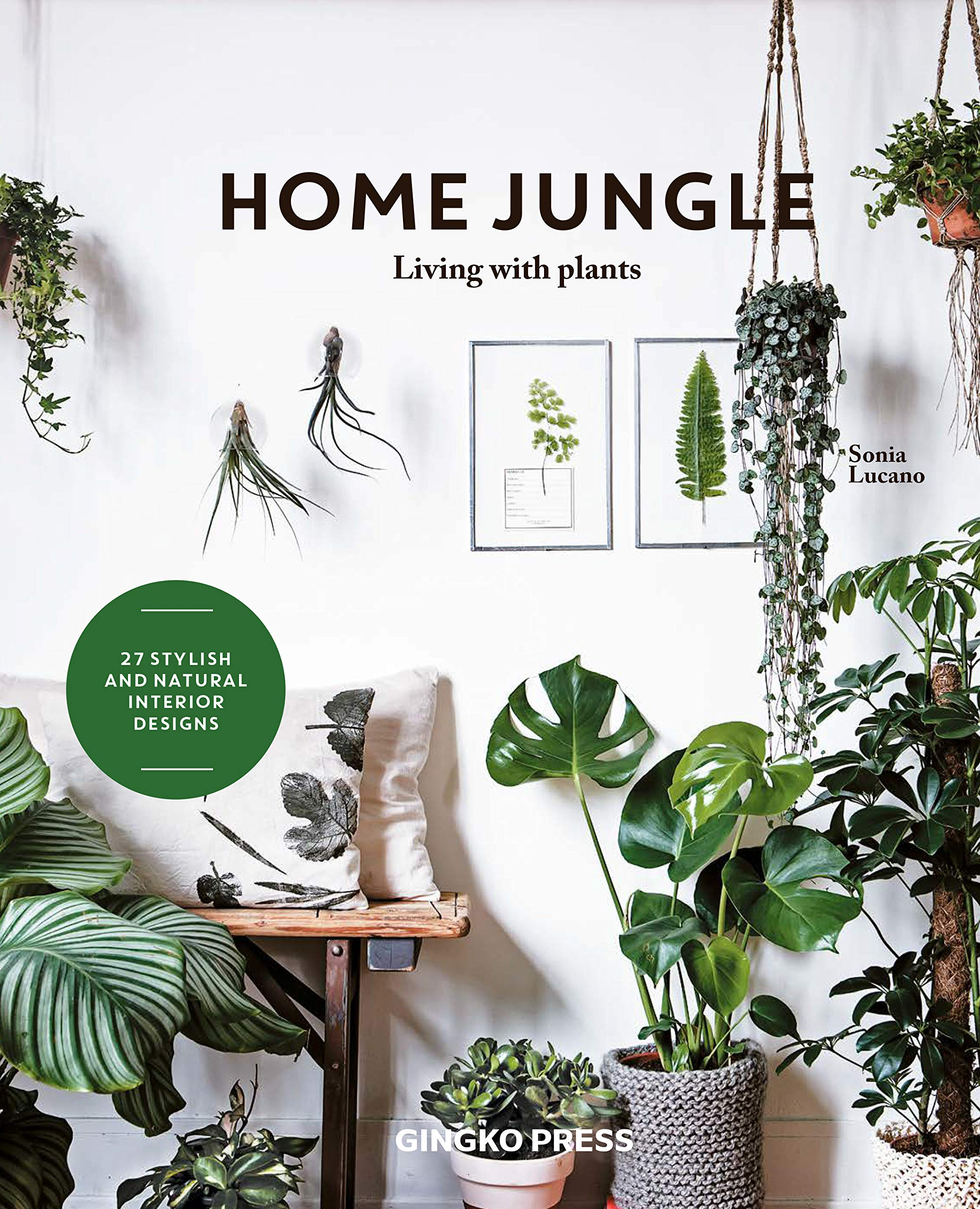 Home Jungle  Decorating Your Home With Plants