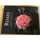 Roses: Old Roses and Species Roses (Evergreen Series)