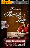 The Forbidden (Forbidden Amish Love Book 2)
