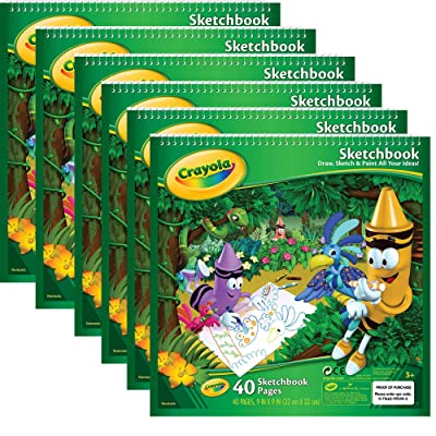 "Crayola Sketchbook 9""X9"", 40 Sheets, 6 Pack: Toys & Games"