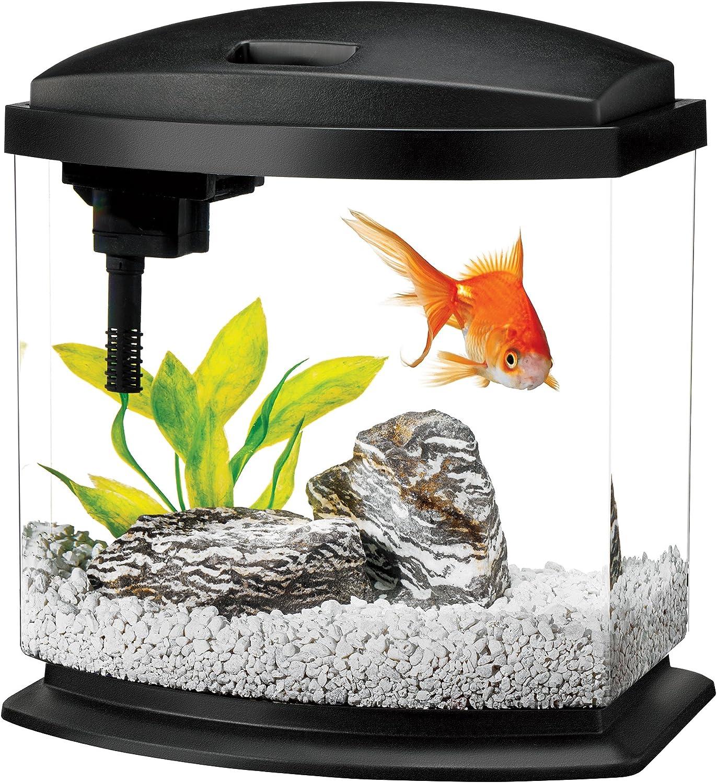 Aqueon LED Minibow Aquarium Starter Kits avec éclairage LED, 2.5 Gallon, Noir