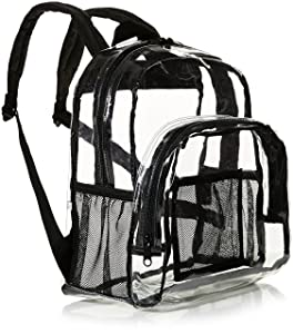 AmazonBasics Stadium Approved Mini Backpack, Clear