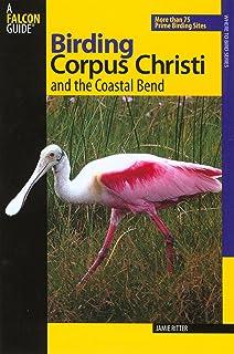 Birding Corpus Christi And The Coastal Bend More Than 75 Prime Sites