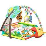 Amazon Com Fisher Price Papasan Cradle Swing Butterfly