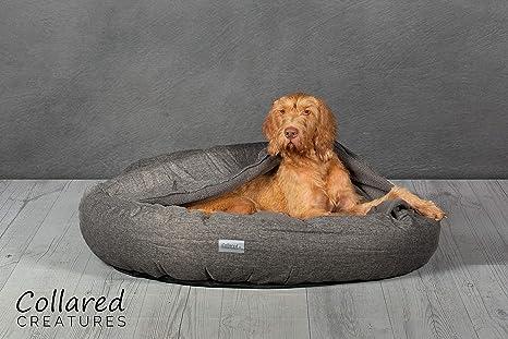 Collared Creatures Comfort Cocoon cama para perro, cama para perro, extra grande, 1100