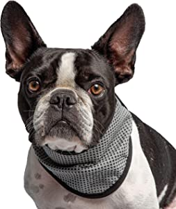 Brave Bark U.S. Army - Pet Cooling Bandana