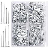 Mr. Pen- Nail Assortment Kit, 600pc, Small Nails, Nails, Nails for Hanging Pictures, Picture Hanging Nails, Finishing Nails,