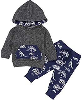 702580279 Toddler Infant Baby Boys Clothes Dinosaur Print Long Sleeve Hoodie Tops  Sweatsuit + Pants Outfits Set