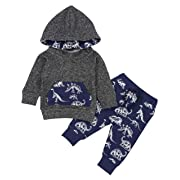 Toddler Infant Baby Boys Dinosaur Long Sleeve Hoodie Tops Sweatsuit Pants Winter Outfit Set 12-18 Months