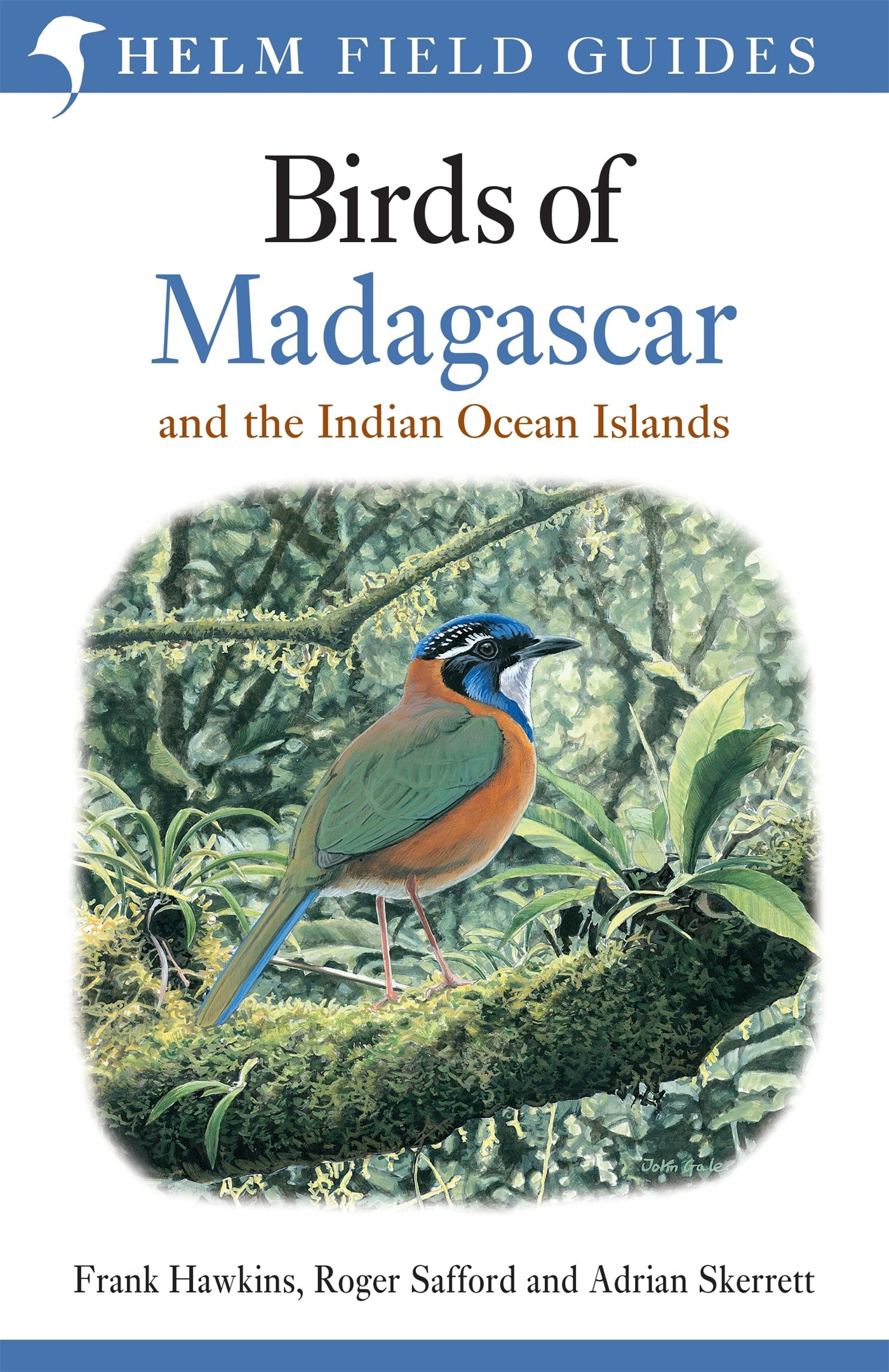Birds Of Madagascar And The Indian Ocean Islands  Helm Field Guides