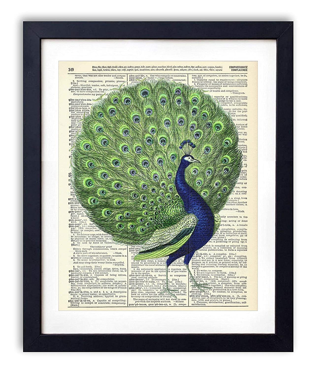 Old Antique Book page Art Print Vintage Peacock Set 1 Dictionary Page Wall Art