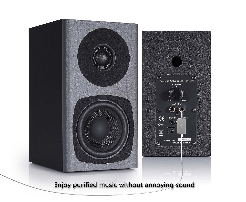 Maceton Preminum Ground Loop Noise Filtering Isolator