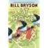 At Home: A Short History of Private Life (Bryson Book 3)
