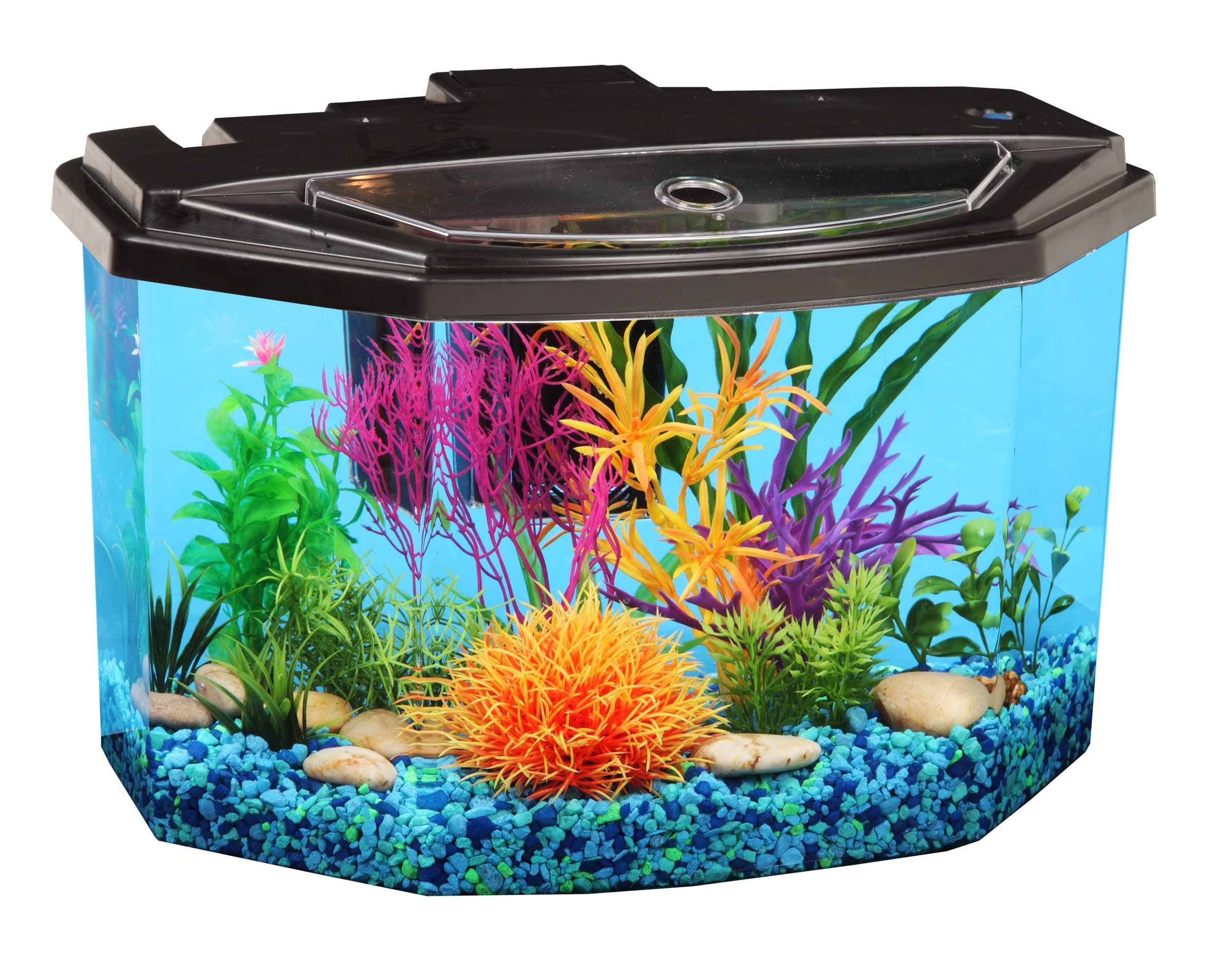 Koller Products AquaView 3-Gallon Fish Tank with LED Lighting and Power Filter by Koller Products
