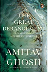 The Great Derangement: Climate Change and the Unthinkable Paperback