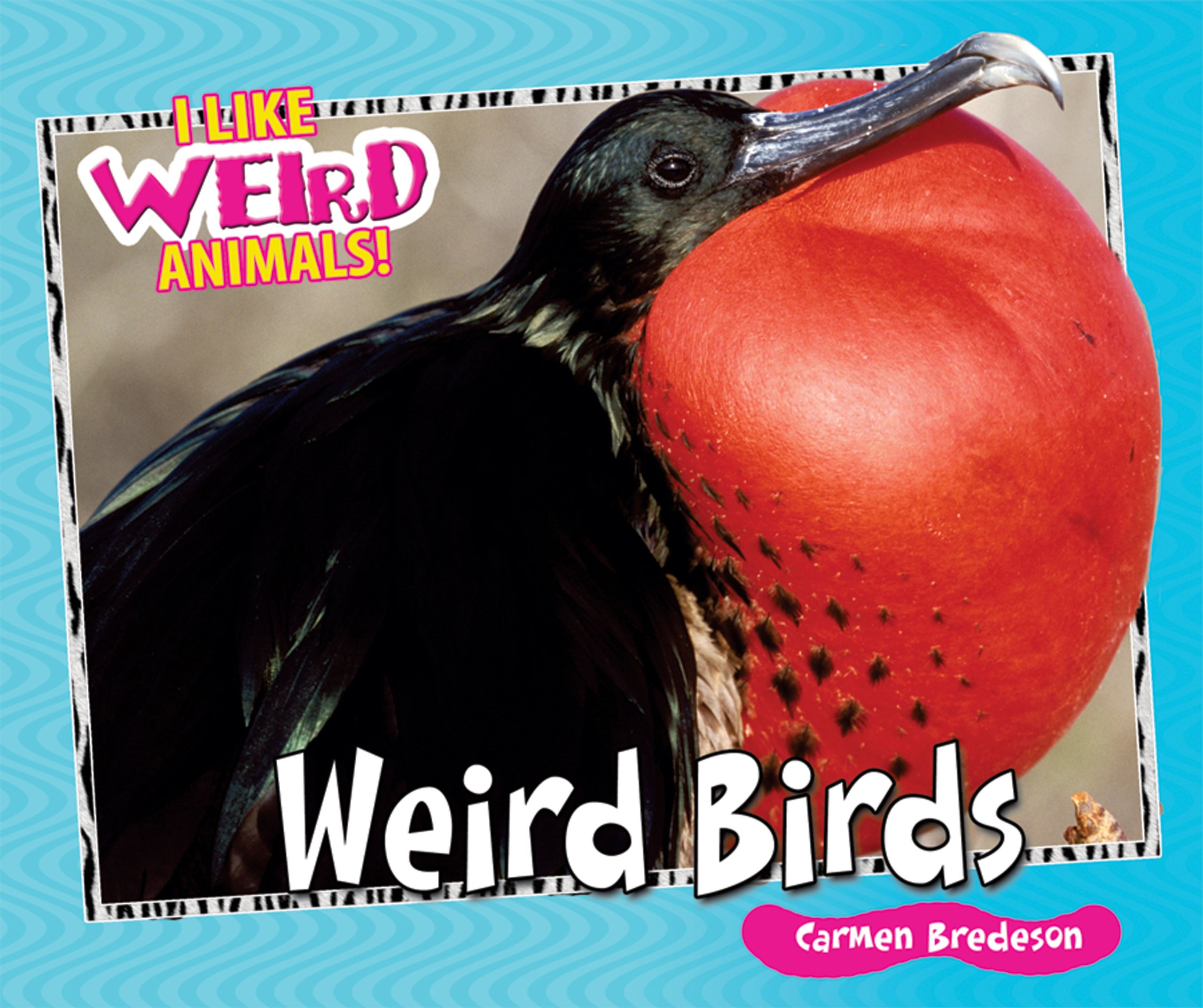Weird Birds (I Like Weird Animals!) ebook