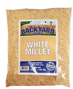 Backyard Seeds White Millet Bird Seed for Finches 8 Pounds