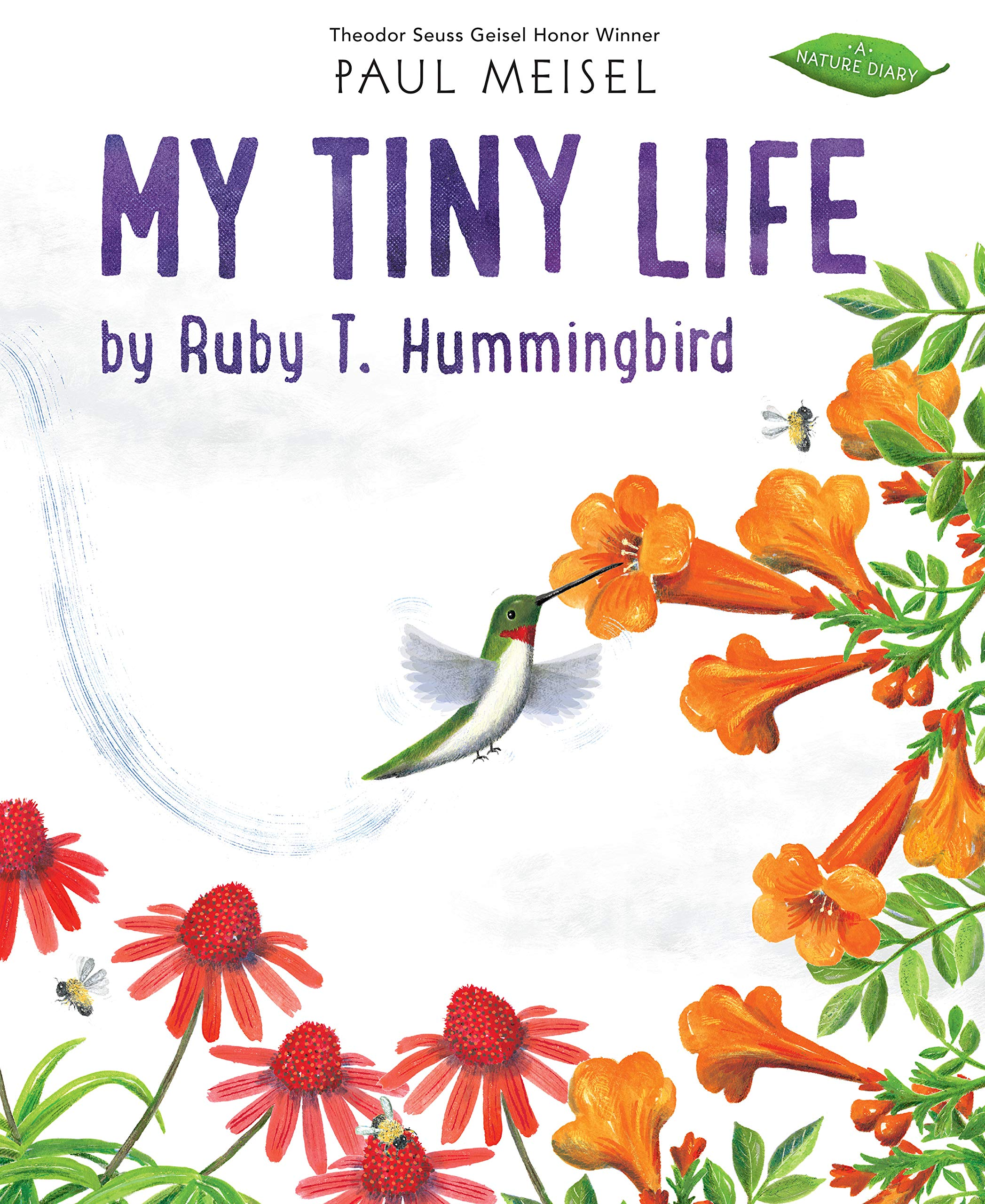 My Tiny Life by Ruby T. Hummingbird (A Nature Diary): Meisel, Paul:  9780823443222: Amazon.com: Books