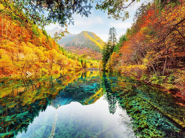 dzjyq 6.5 X 5ft (2 x 1.5 M) 秋ブルースカイホワイトクラウドグリーンYellwo GoldenレッドフォレストツリーMountain Clear Water湖美しい景色HolidayツアーBackdrop写真背景410   B07FX8WWDM